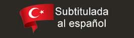 verseries turcas subtituladas